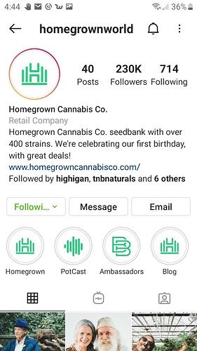 Screenshot_20201208-164445_Instagram