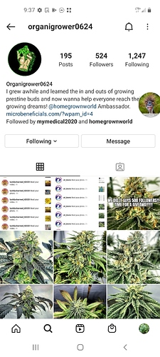 Screenshot_20201216-093719_Instagram